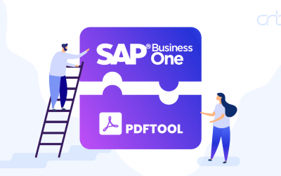 SAP Business One – PDF Tool integratie